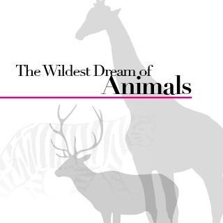 時尚圈瘋動物 設計師帶你走進奢華動物園
