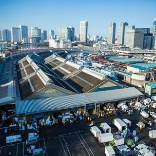 日本漁食文化核心重地 《築地市場:和食之心》大解密
