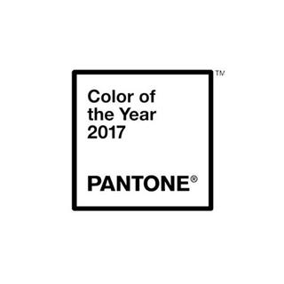 15-0343,Pantone公布2017代表色!