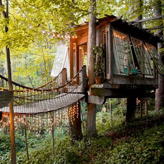 這是繪本複製貼上吧,世界第一樹屋太夢幻!