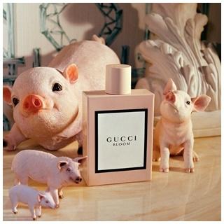 萌翻了! Gucci 2019農曆年限定系列