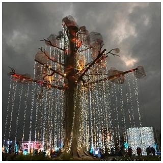 結合科技創意豐富 台灣今年燈會很有趣