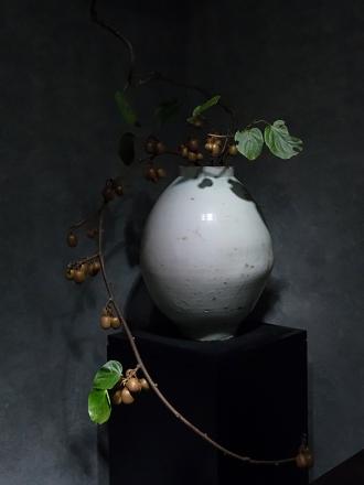 聚集亞洲千百年陶器的盛會 以超脫本位的歷史器物襯托植物之美